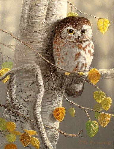 Image result for Autumn Owl